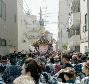 asakusaお神輿2m